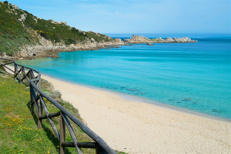 beaches in sardinia | grass and sand beach by clear blue water under clear skies and hillside | Spiaggia Rena Bianca