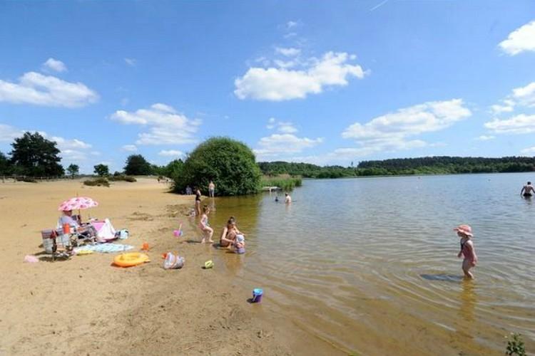 frensham-great-pond-summer