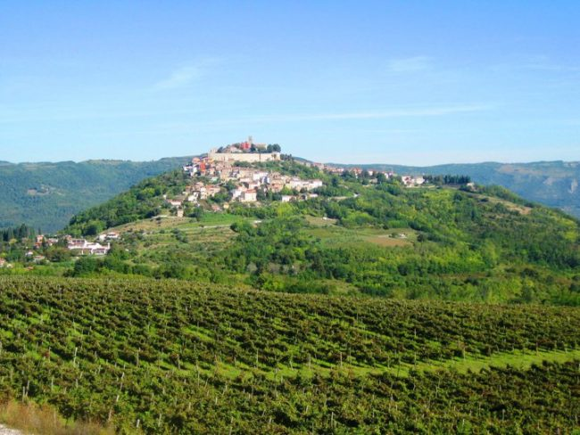 Istrian food and wineries guide
