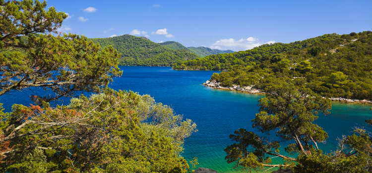 Mljet National Park things to do in dubrovnik