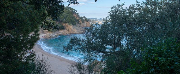 Best Beaches in Costa Brava Cala Sant Francesc, Blanes