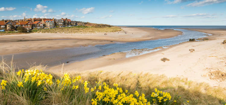 best beaches in northumberland alnmouth beach