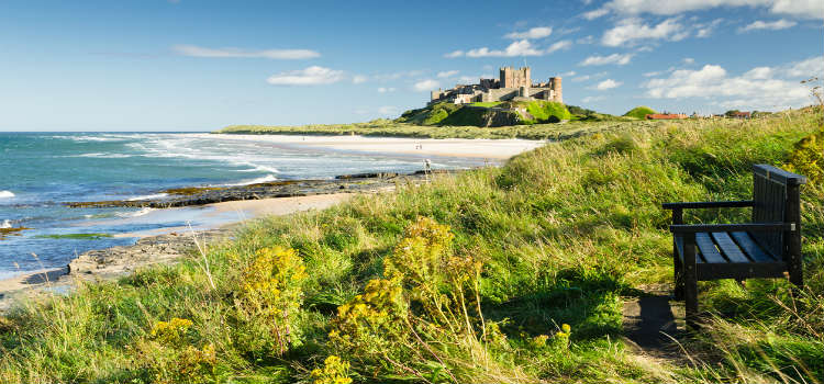 bamburgh castle things to do in northumberland