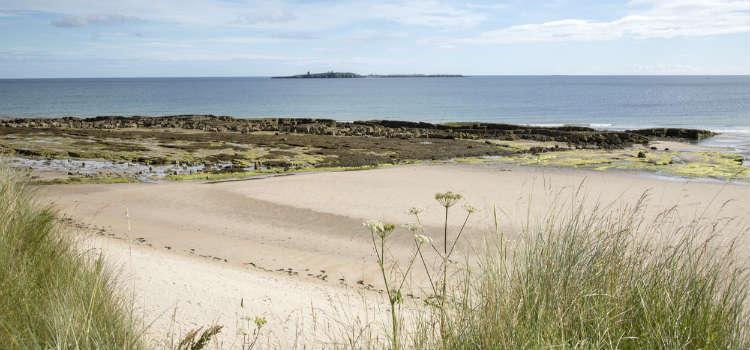 best beaches in northumberland