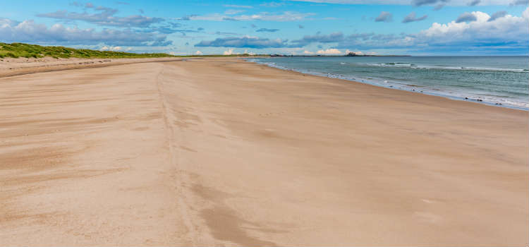 best beaches in northumberland ross sands
