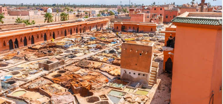 Things to do in Marrakech - Marrakech tanneries