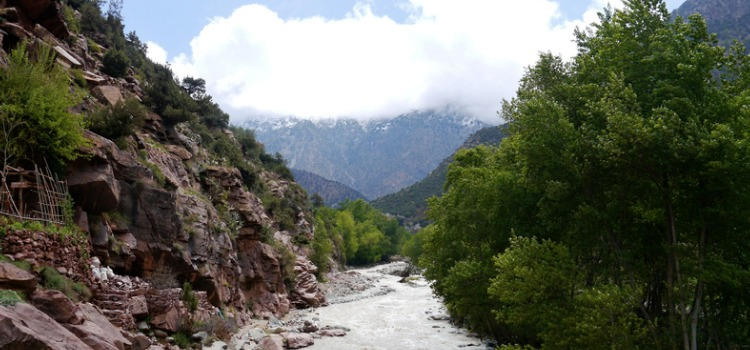 Things to do in Marrakech - Ourika Waterfalls