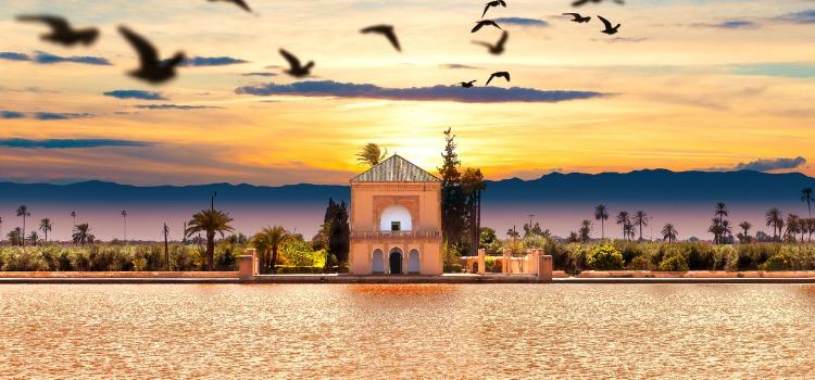 Things to do in Marrakech - Menara Gardens