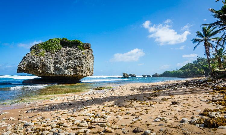 Best beaches in Barbados Bathsheba Beach