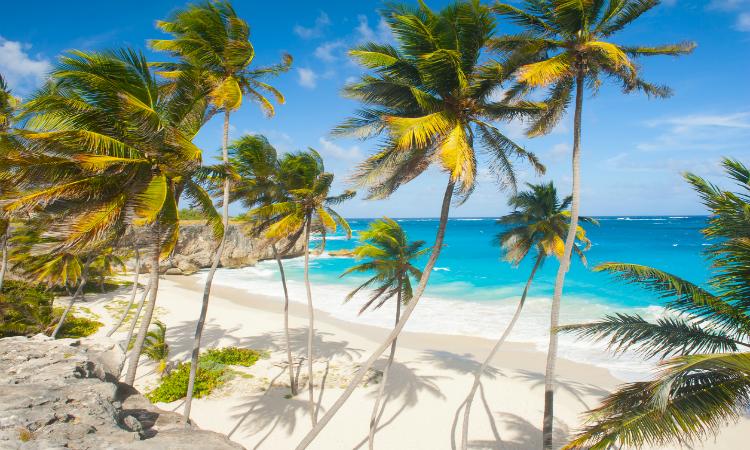 Bottom Bay Beach Barbados header