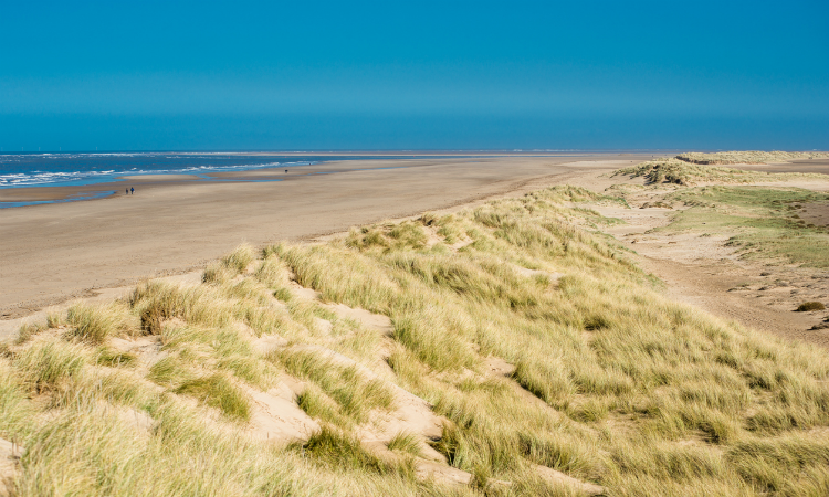 Holkham Beach and Nature Reserve