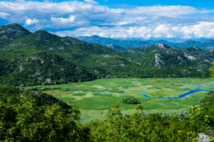1 week in Montenegro - Lake Skadar