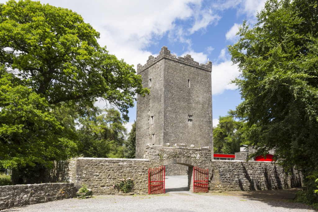 County Meath Castle Ireland