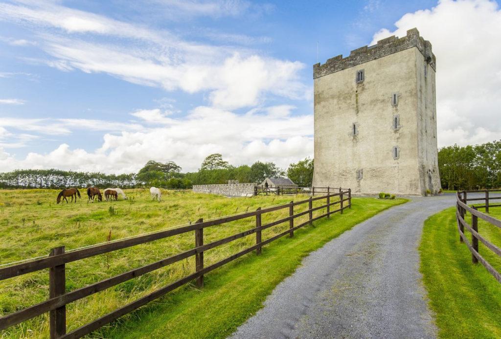 Deburgo Castle Ireland