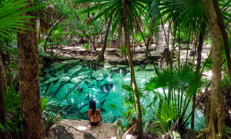 Green paradise cenote azul with palm trees and ruins at bottom of the water in the Riviera Maya, Yucatan Peninsula