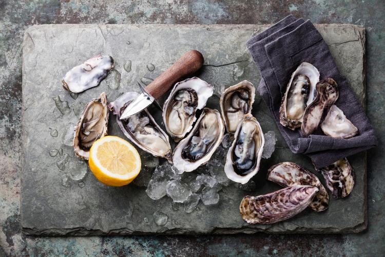 Oysters in Ile de Re