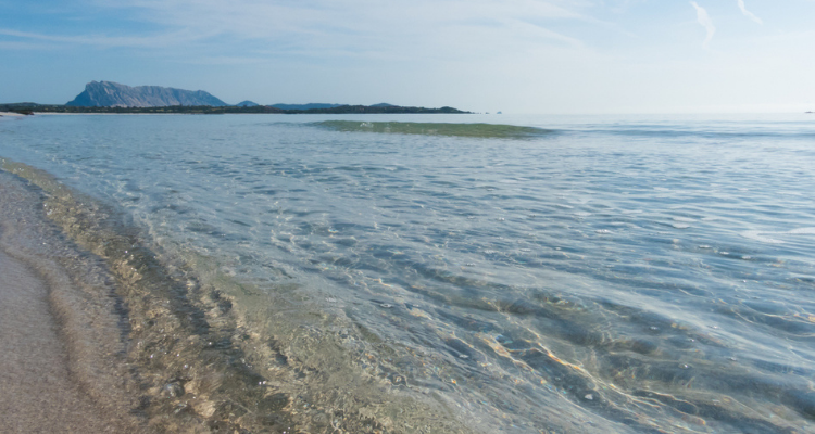 Spiaggia La Cinta. Sardinia