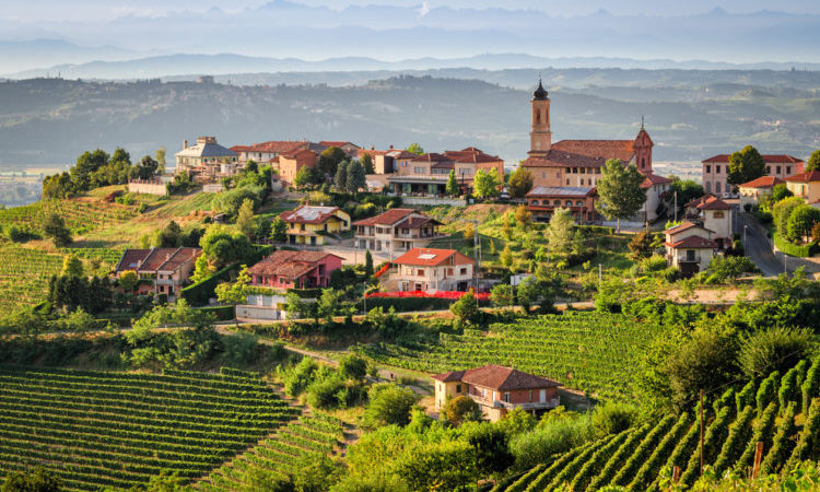 Views of the Treiso (Le Langhe) region in Piedmont