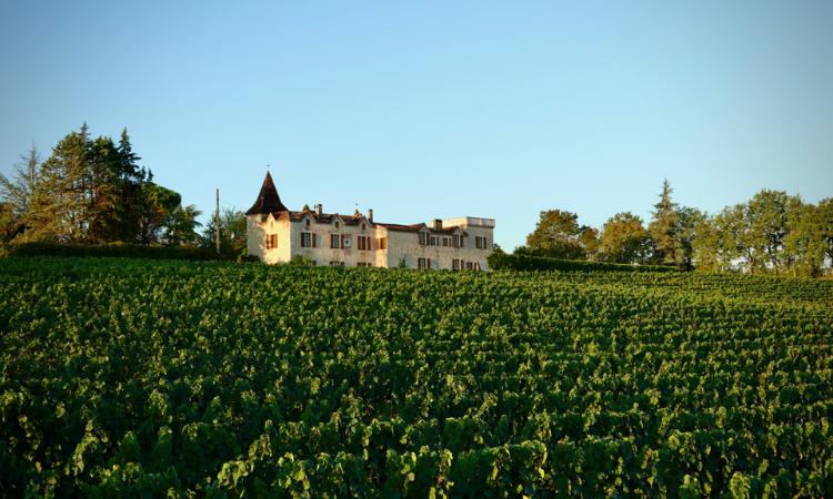 Maison Des Vignobles, France
