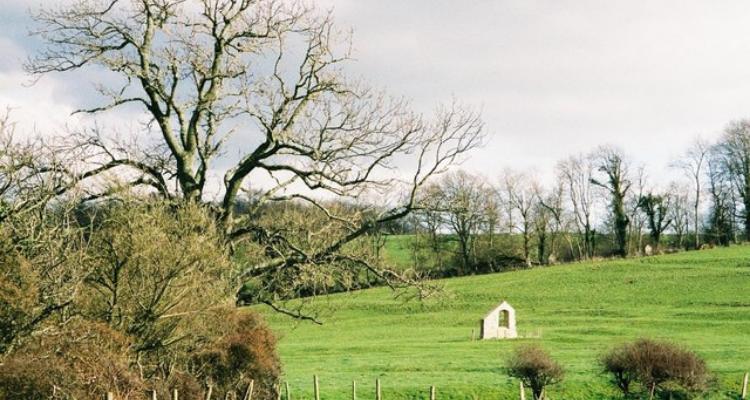Winterborne Farringdon, Dorset