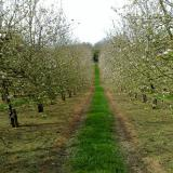 Top 5 Brewery and Cider Tours in the UK
