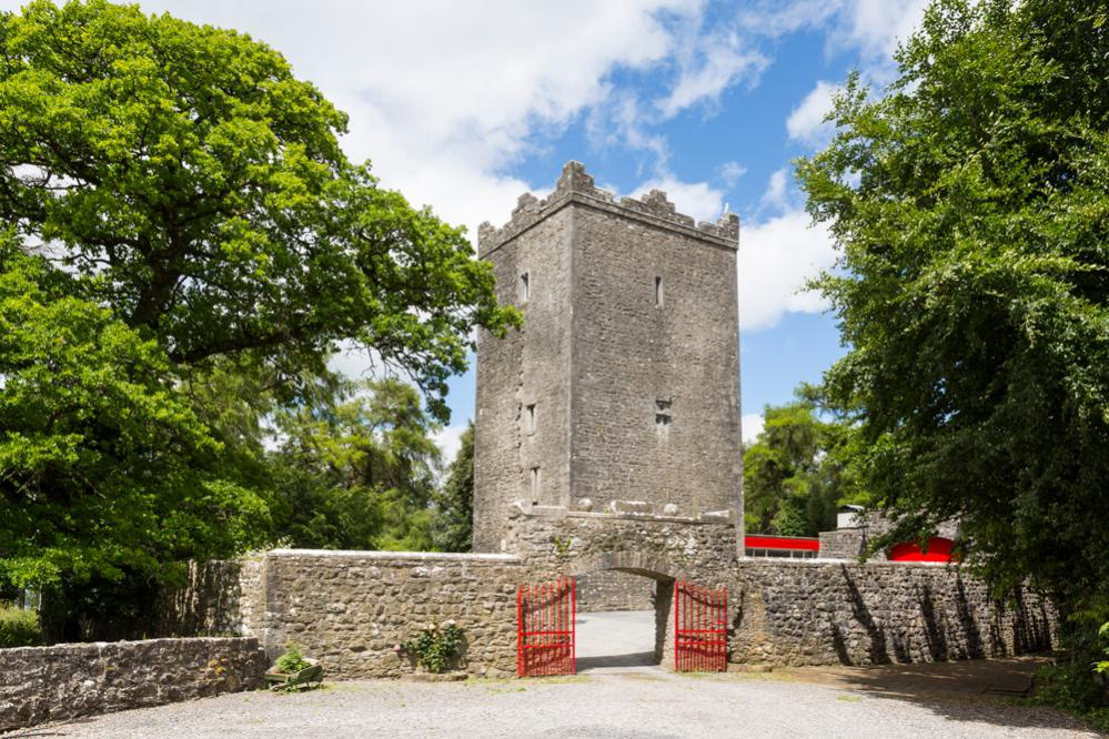 County Meath Castle, Ireland | Oliver's Travels