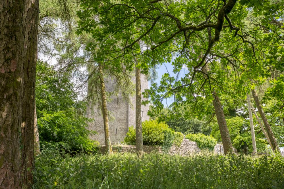 County Meath Castle, County Meath   Oliver's Travels