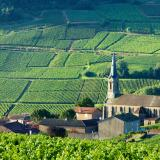 The Local's Guide to Authentic Burgundy