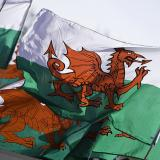 Day of the Dragon: Great Ways To Celebrate St. David's Day