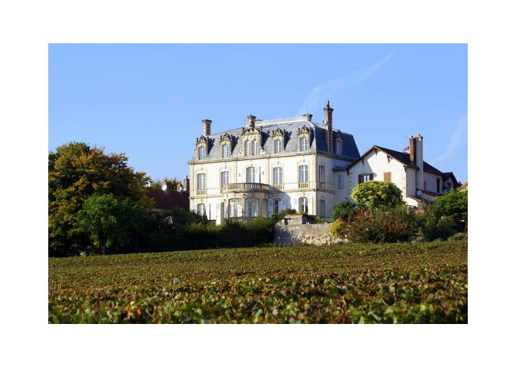Chateau De Naugues
