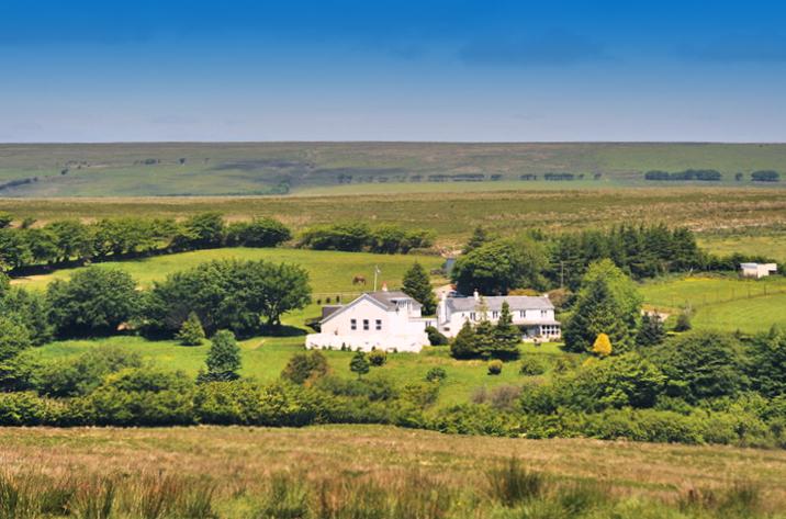 Sessile Cottage